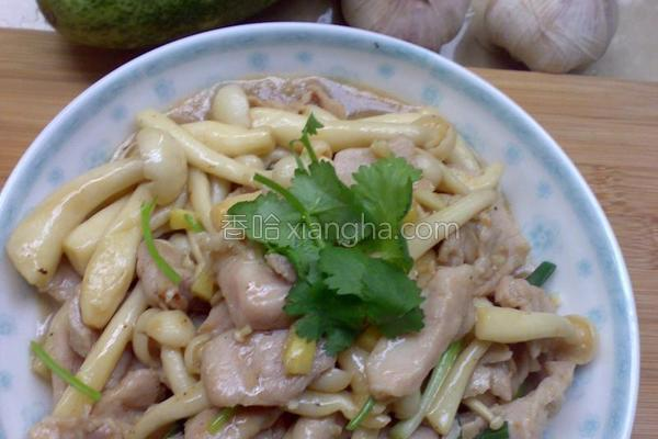 白玉菇炒肉片的做法
