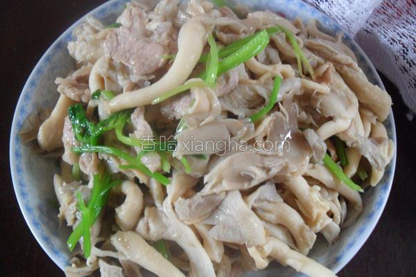 凤尾菇炒肉的做法