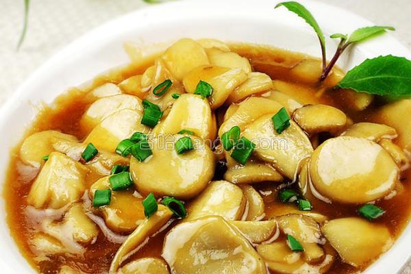 鲍汁杏鲍菇的做法
