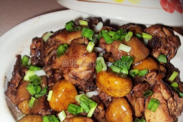 栗子焖鸡的做法