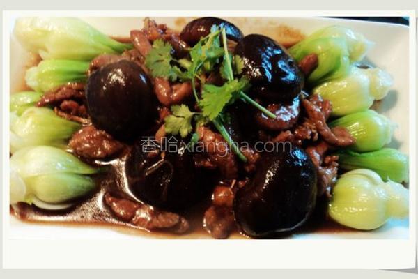 蚝油冬菇扒菜胆的做法
