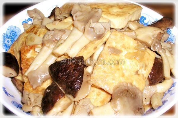 蚝油双菇豆腐的做法