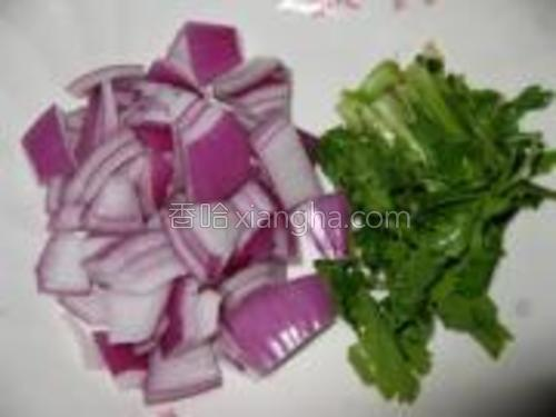 洋葱洗净切片、香菜洗净切段。