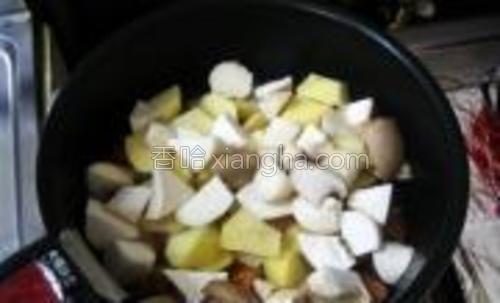 加入土豆块、杏鲍菇块,中小火翻炒,使之沾到油。