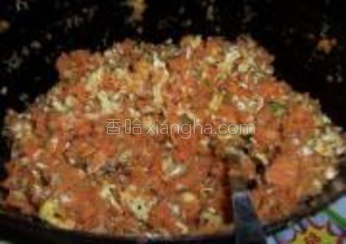 倒入鸡蛋碎虾皮盐鸡精香油搅拌均匀。