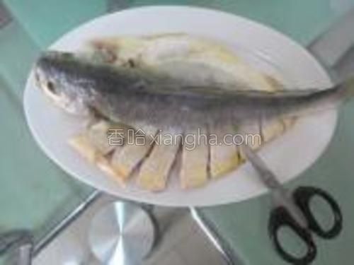 把鱼洗干净,用剪刀剪出造型,这个造型,吃起来很方便。不用翻面。