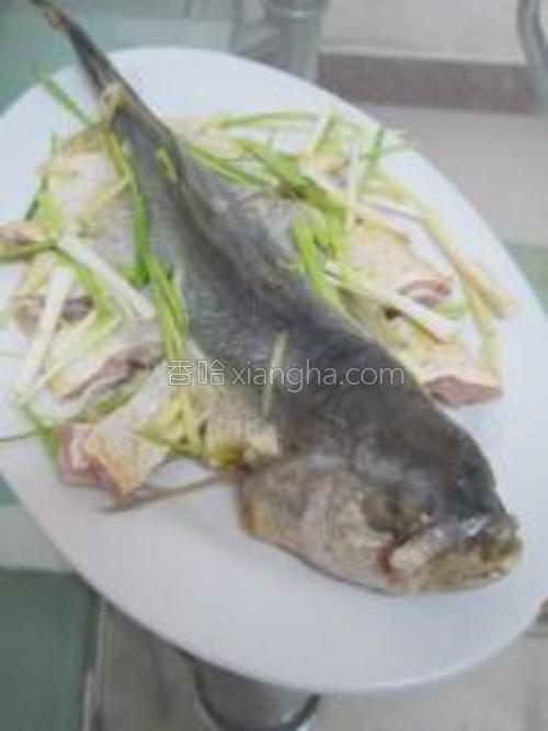 鱼用葱姜料酒盐腌两个小时,这样就没有腥味了