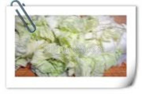 大白菜切块。