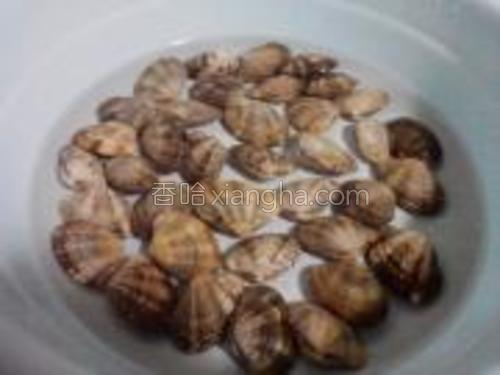 花蛤买回来要泡上十分钟,滴两滴油可以让花蛤吐净沙子。