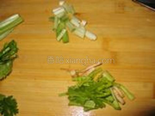 香菜、香葱切段。