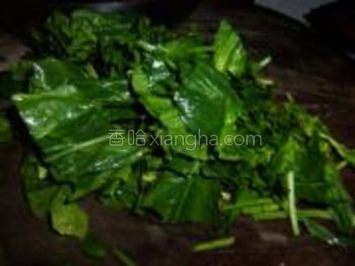 把菠菜摘去老叶洗净切成寸段。