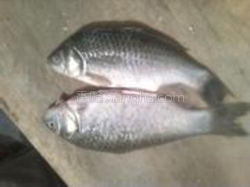 将二条鱼洗净。