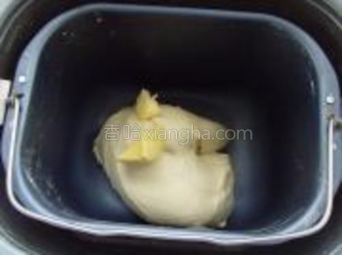 20分钟后,将黄油放入,继续执行完揉面。