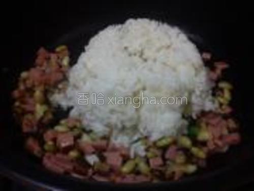 倒入大米饭,边炒边压,把米饭炒散。