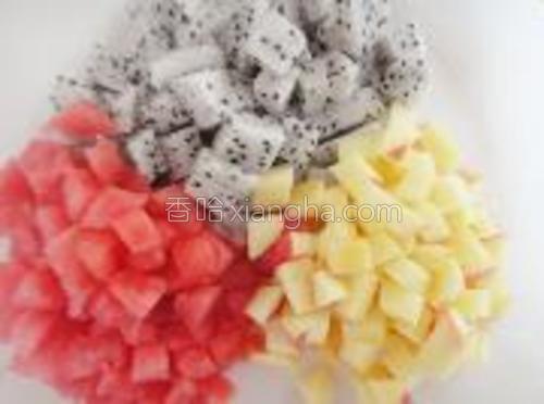 把准备好的水果切成小粒状。