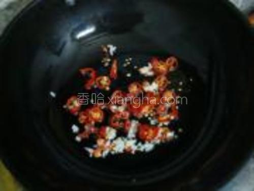 锅内加油烧热下入红辣椒段、蒜末爆香。