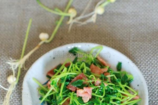 培根凉拌豌豆苗的做法