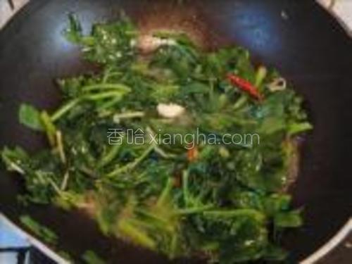 木耳菜炒熟了,放盐、味精、香油拌匀装盘。