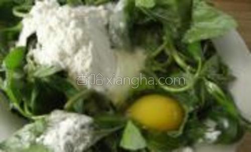 薄荷洗净沥水、放少许盐腌一下,打入鸡蛋、放入面粉。