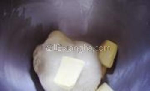 面团材料除黄油外,揉至出筋,加入黄油。