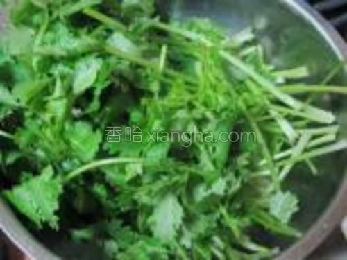 香菜择好洗净,对半切成两段,沥水备用。