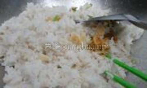 葱段和虾皮炒香后,把蒸好的米饭加进来翻匀