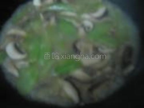 窝笋口蘑新鲜香菇小野生菌倒入锅内,加入少许盐后翻炒片刻,放小半碗水半个浓汤宝。