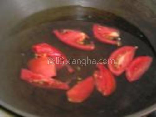 锅加水,放入切好的蕃茄。