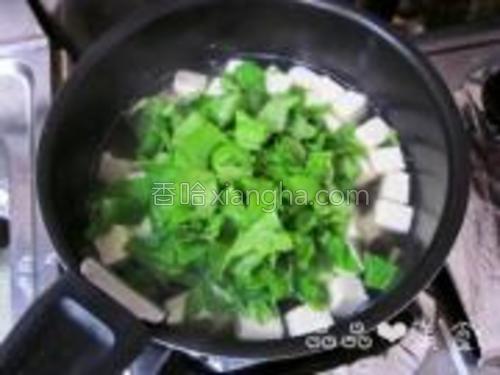 将青菜放入豆腐木耳汤中。