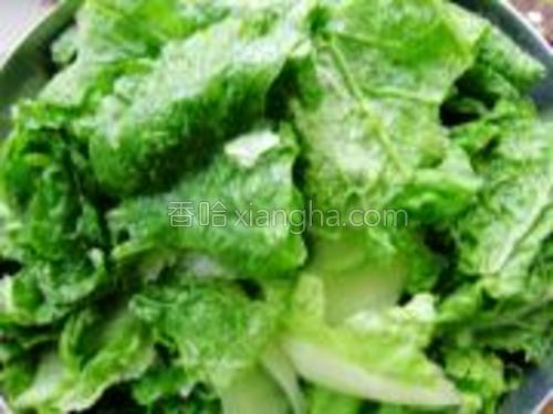 将白菜清洗干净,切成片装入碗中待用。