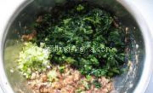将小白菜和葱末加入上好劲儿的肉末中。