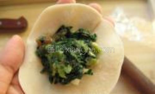 拿好饺子皮,上面放适量的饺子馅。