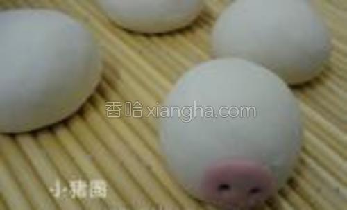 用红曲面团给猪猪安上鼻子,粘合处要用清水沾湿后再粘合。