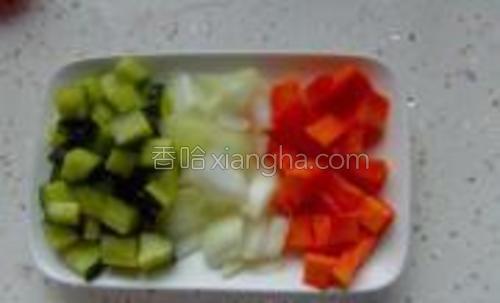 胡萝卜,黄瓜,洋葱切成丁