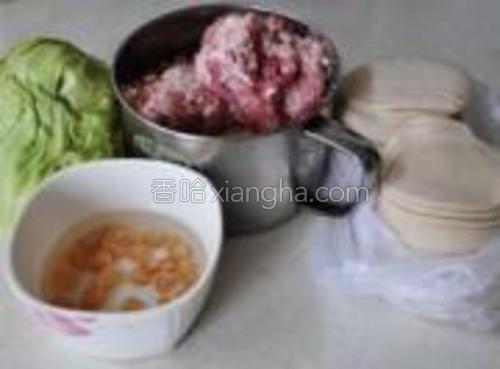 准备好苞菜、猪肉泥、干贝、饺子皮。