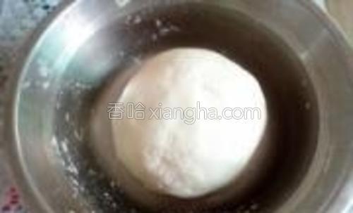 白色面团揉成光滑,放温暖处发酵。
