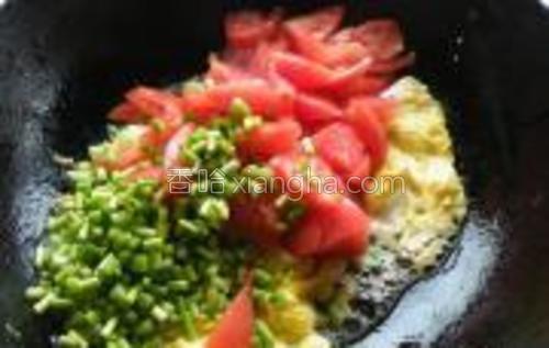 放入西红柿和蒜苔