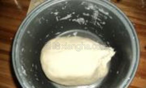 放少许的盐,用水把面揉成团。