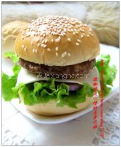 面包横切两半,放上生菜、西红柿片、洋葱圈、奶酪片、肉饼即可。