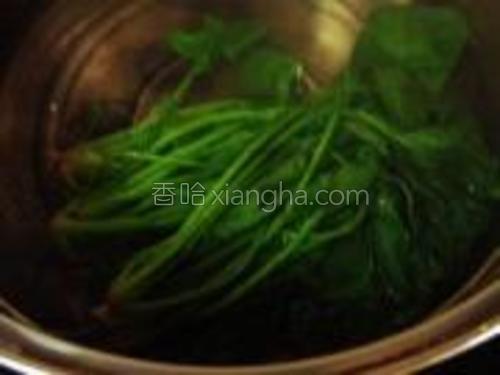 将菠菜少许焯一下水,焯水时加一勺盐。