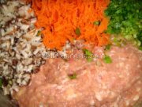 把香菇芹菜切成丁,胡萝卜擦丝倒入肉馅中。
