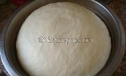 将面团揉至完成阶段,开始一次发酵至2倍大。