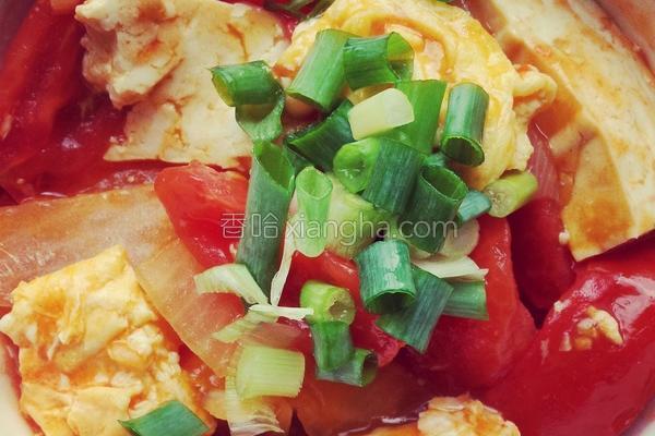 番茄豆腐烩蛋的做法