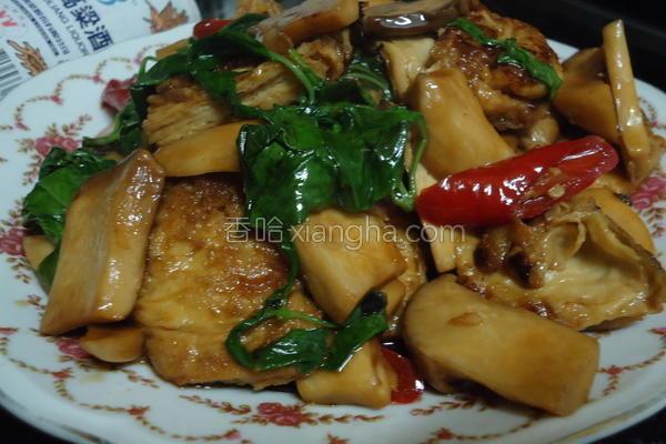 塔香杏包菇的做法