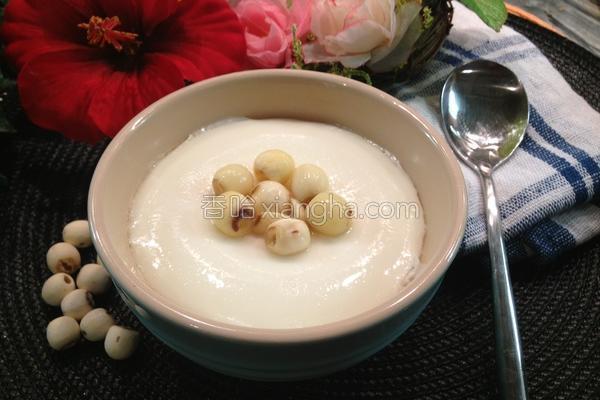 滋润莲子炖奶的做法