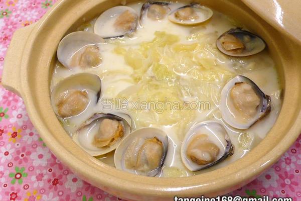 蛤蜊奶油炖白菜的做法