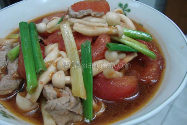 美白菇炒番茄的做法