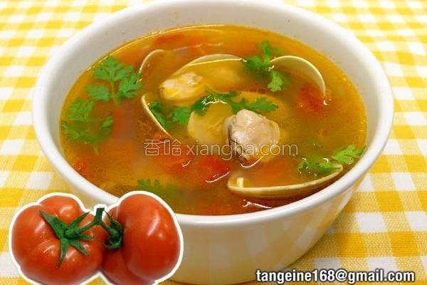 洋葱番茄蛤蜊汤的做法