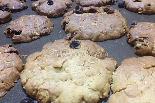 葡萄燕麦手工饼干的做法