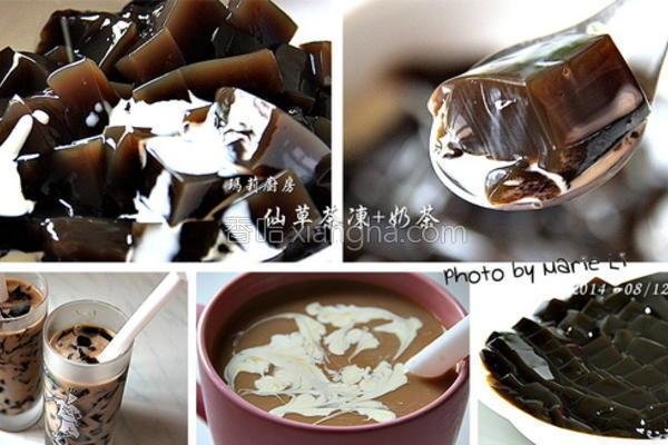 人山艹茶冻的做法